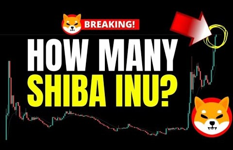 CAN SHIBA INU MAKE YOU A MILLIONAIRE – How Powerful Shib Coin Enact You Need To Get dangle of Rich?