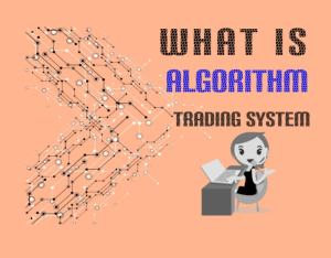 What is Auto Algorithmic Trading System: Best Software and Providers
