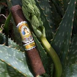 La Aroma De Cuba Mi Amor