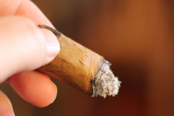 Rodriguez Cigars Reserva Privada