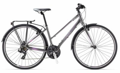 Stolen Giant Escape City 3 Medium Ladies Frame