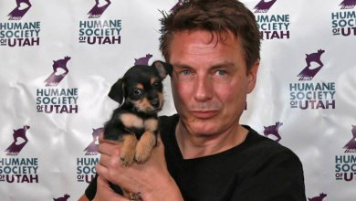 Photo of John Barrowman Adopts Puppy at Slcc