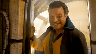 Photo of Lando is Back!