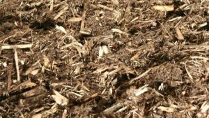 Cedar Mulch Installation – Per Yard Spread