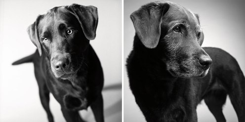 Corbet: 2 years & 11 years