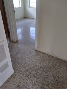 Terrazzo Restoration/Polishing Indiatlantic