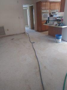 AllStone Floor Restore