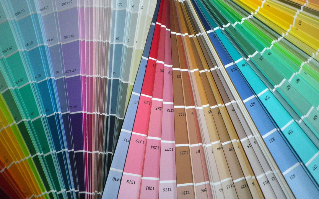variety of paint swatches