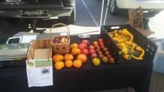 farmers-market-10