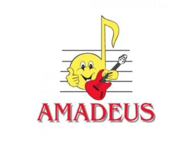"""Scuole, musica, Friuli Venezia Giulia, Associazione Culturale """"Amadeus"""" ,Udine"""