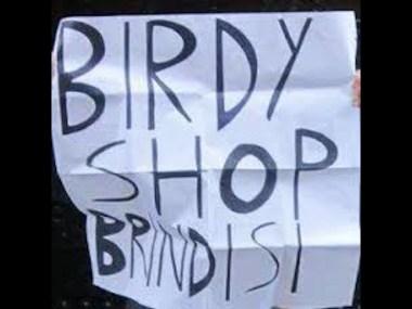Negozi, musica, Puglia, Italia ,Birdy Shop, Brindisi