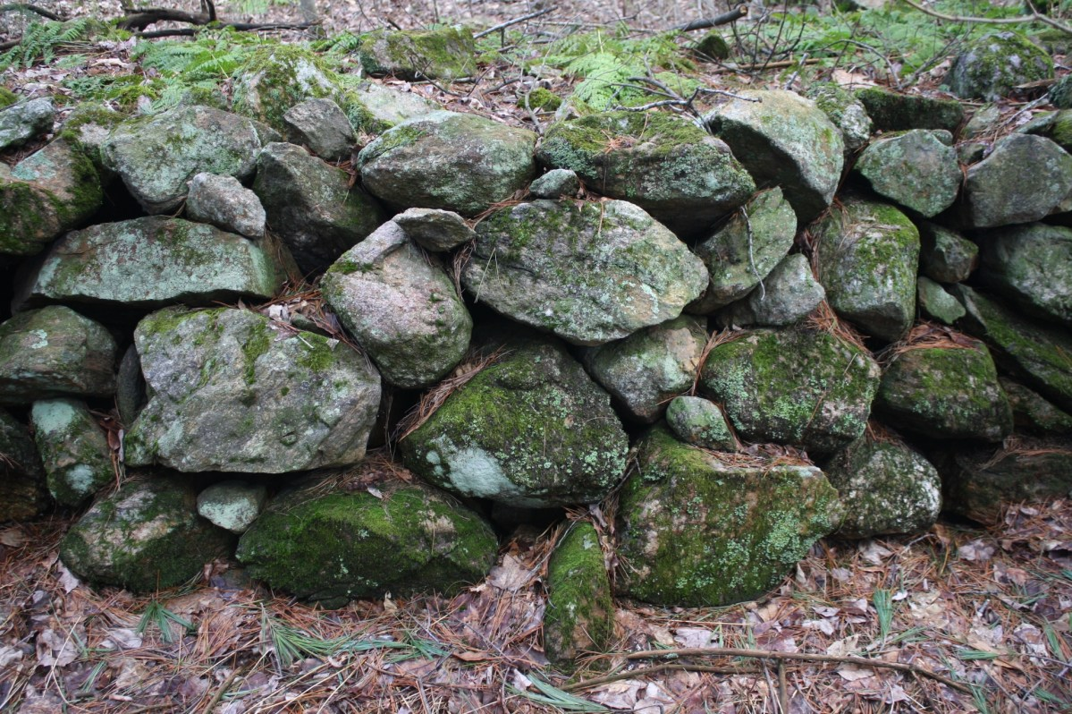 New England Fieldstone Wall - Barre, Ma