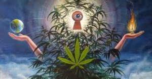 trippping on weed