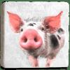 Pig Marble Coaster Flat