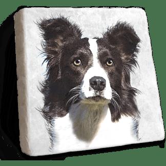 Border Collie Marble Coaster