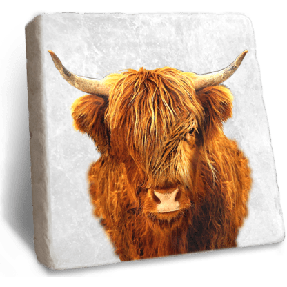 Highland Cow Marble Coaster