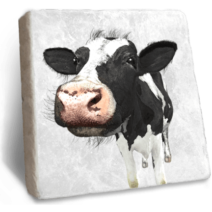 Dairy Cow Marble Coaster