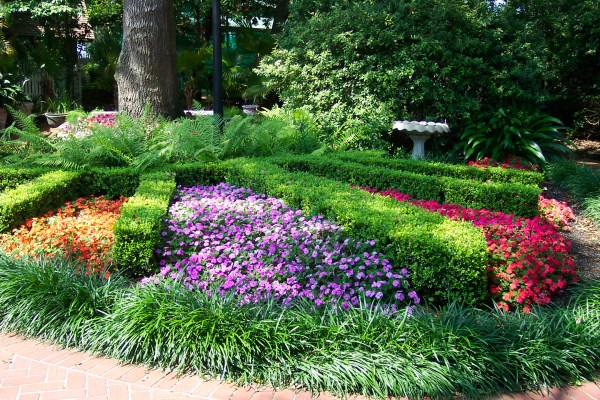 lawn care and landscaping company
