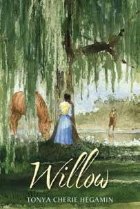 Willow book cover