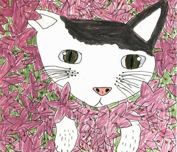 Phoebe cat in the flowers