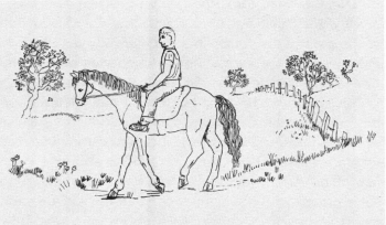 A Ride with Fate Riding a horse