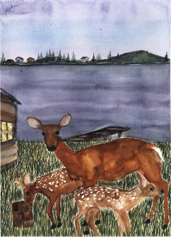 tripod deer family