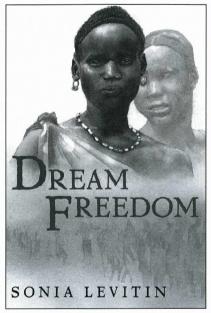 Dream Freedom book cover
