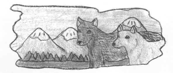 Lakota two animals