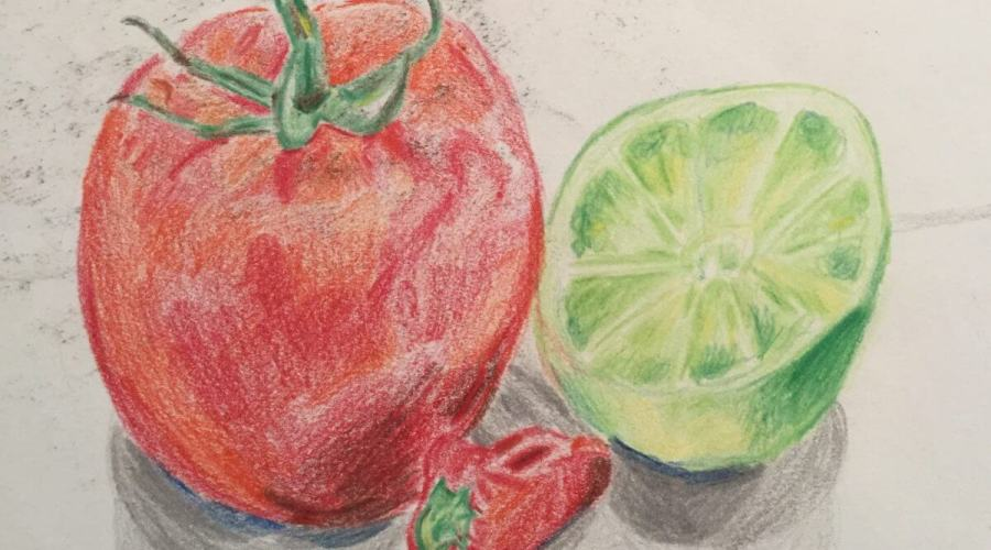 Still Life in Colored Pencil