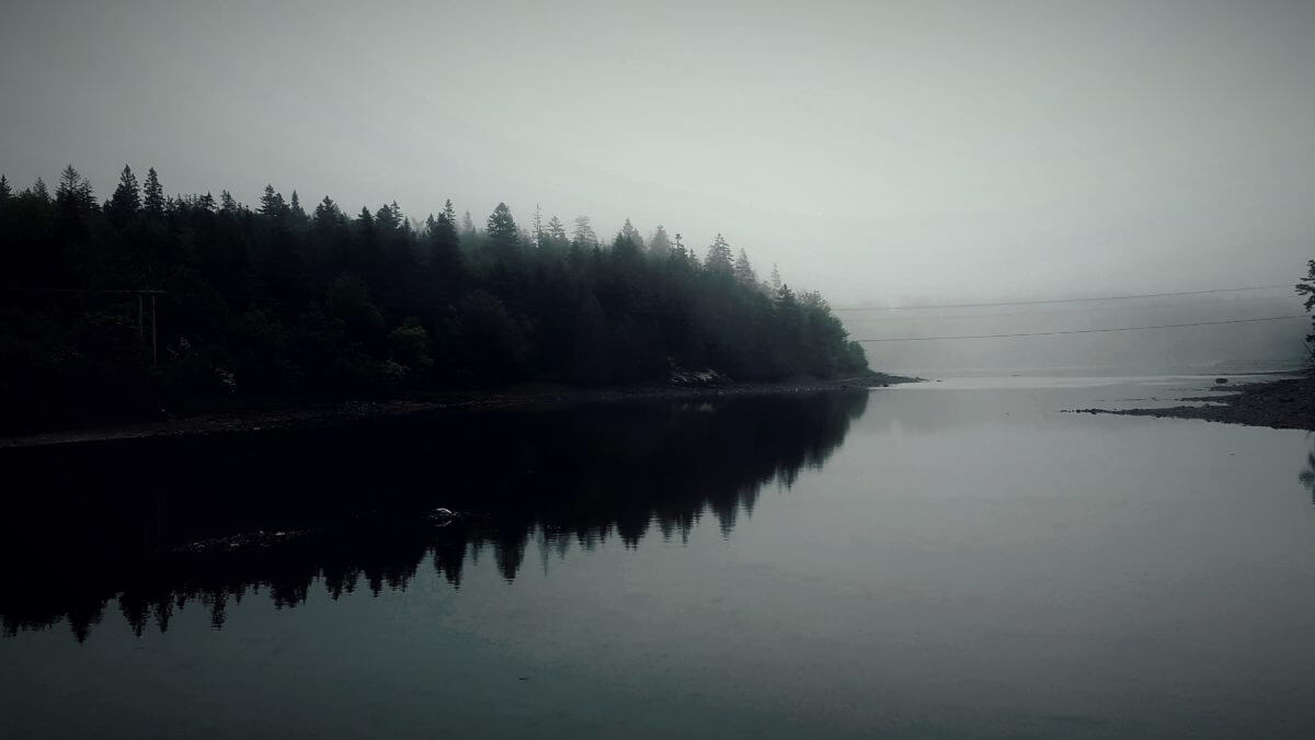 Mist at the Lake