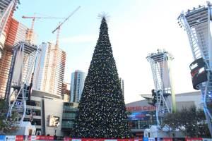 Cranes and Christmas Tree