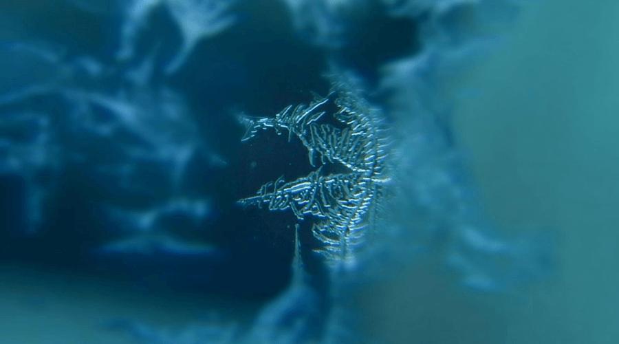 Snowflake Hiding in Blues