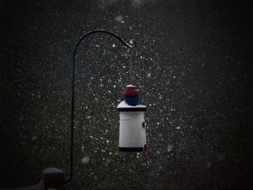 A Glimpse of Winter