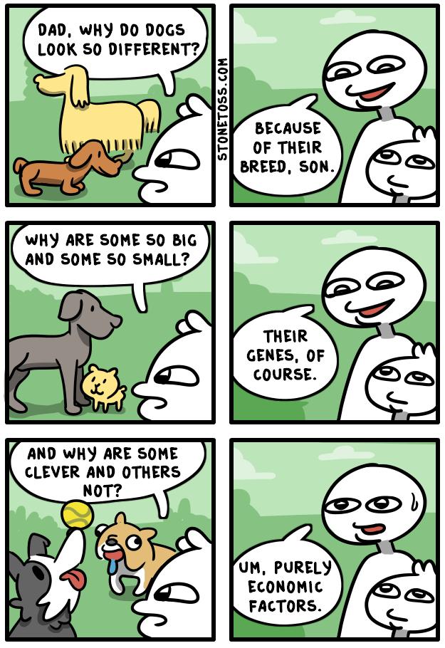https://i0.wp.com/stonetoss.com/wp-content/uploads/2018/05/dog-breed-intelligence-comic.png?fit=625%2C910