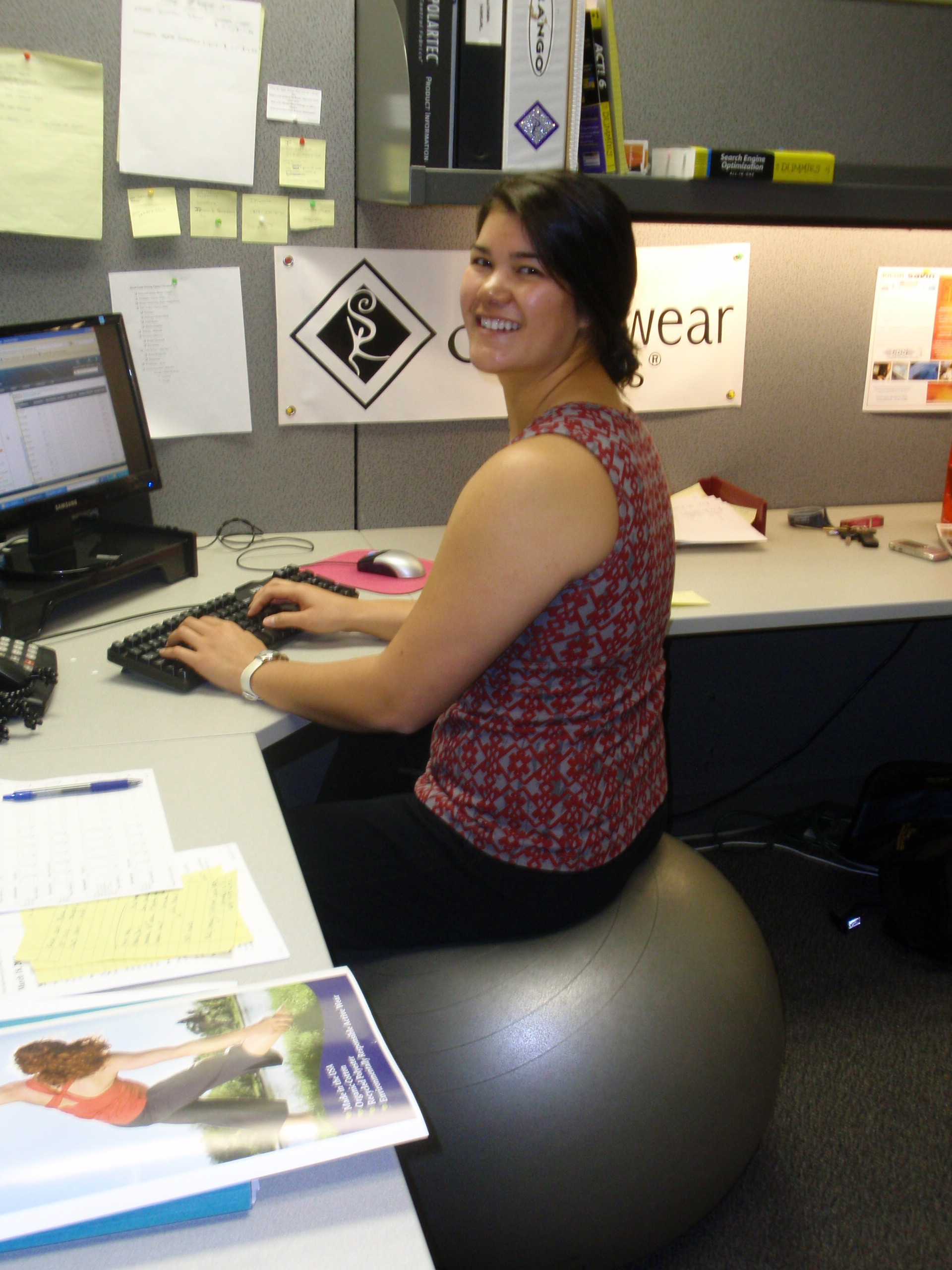 Exercise Ball Desk Chair Why Not Use A Fit Ball As A Desk Chair Stonewear Designs S Blog