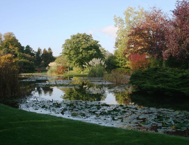Burnby Hall Gardens12