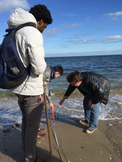 Applied science students working with a Stony Brook University science professor at Caumsett State Park