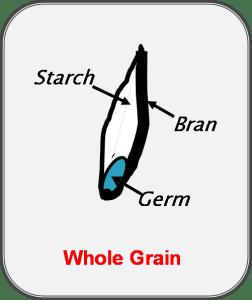 Wheat kernal