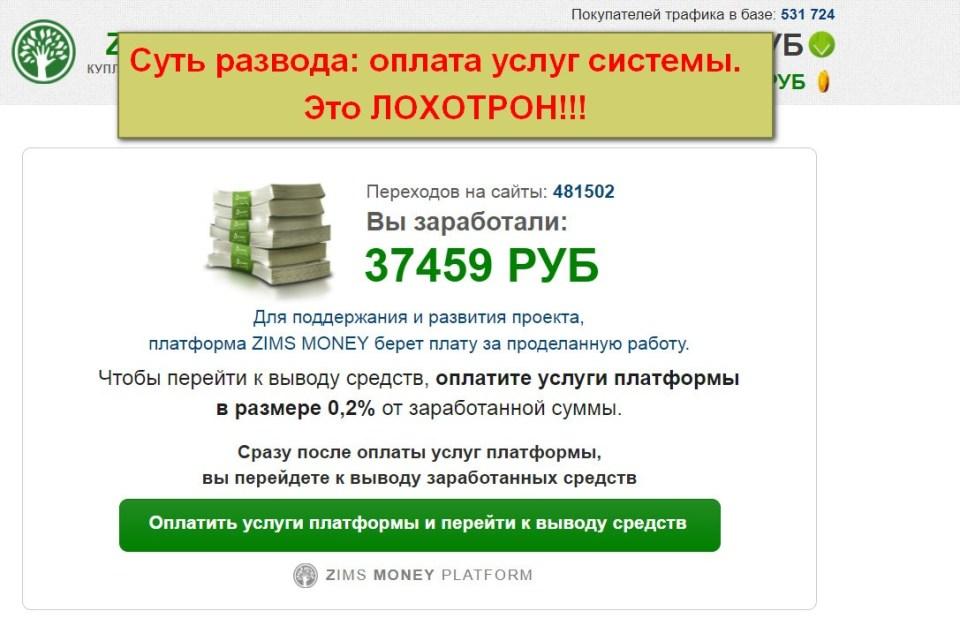 Zims Money, купля-продажа интернет-трафика