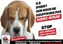 Pétition : L'argent récolté par le Télévie et versé au FNRS est attribué par celui-ci aux expérimentateurs sur animaux