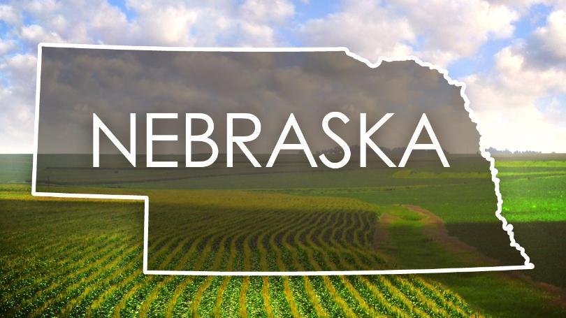 Nebraska Adult And Child Abuse Neglect Hotline