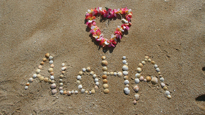 Hawaii, support an ACE resolution
