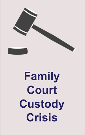 Family court custody crisis