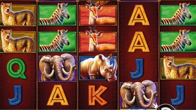 safari-king-slot-gameplay