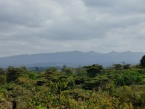 "View of the Ngong Hills, made famous by Karen Blixen's book (and the movie) ""Out of Africa"""
