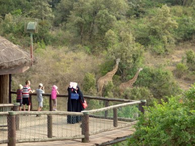Viewing platform over Nairobi National Park