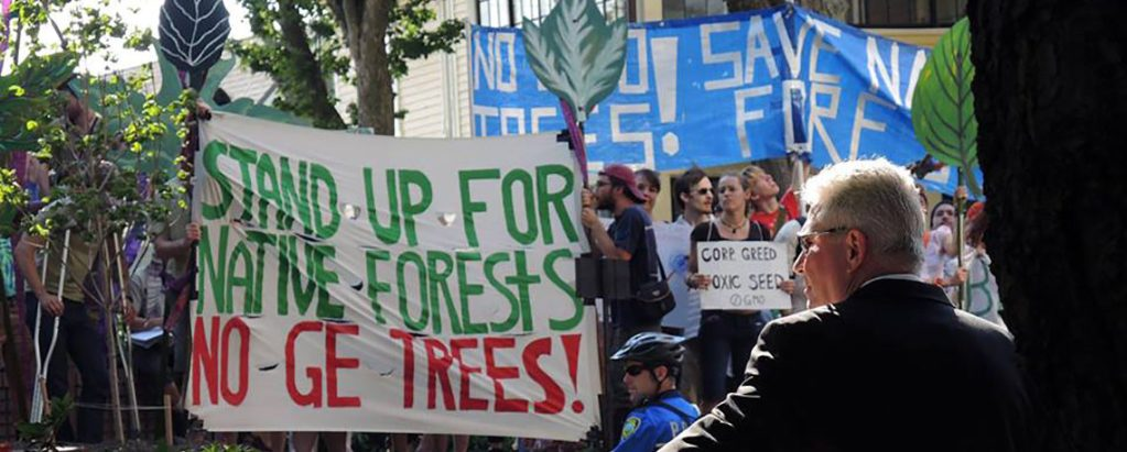 Support communities to conserve real forests, stop industry's fake forests