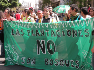 """""""Plantations are not forests"""" Protest at the World Forestry Congress, Buenos Aires, Argentina, 2009  Photo: Petermann/GJEP-GFC"""