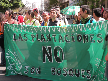 """Plantations are not forests"" Protest at the World Forestry Congress, Buenos Aires, Argentina, 2009  Photo: Petermann/GJEP-GFC"