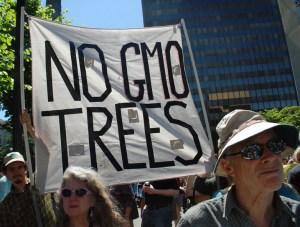 March against Monsanto 2013. langellephoto.org